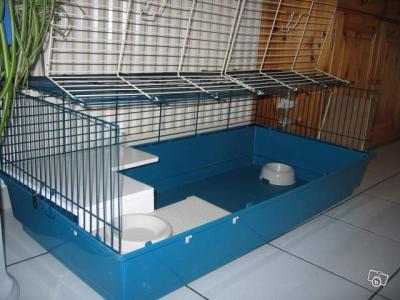 Le Bon Coin Cage Pour Lapin Cochon D Inde D 1m20 Tres Bon Etat